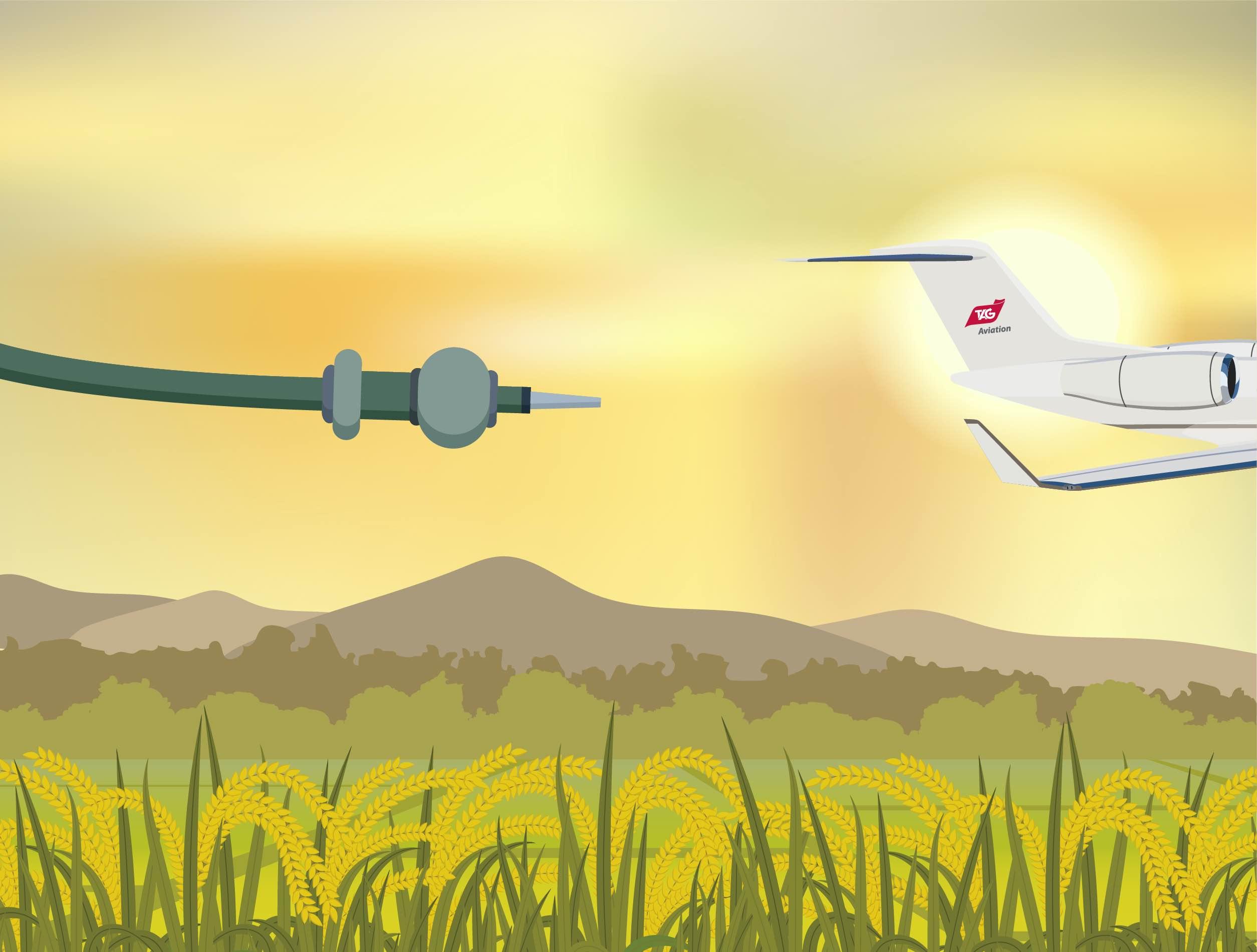 可持續航空燃料
